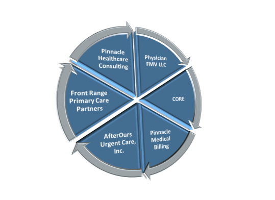 About   Pinnacle Healthcare Consulting
